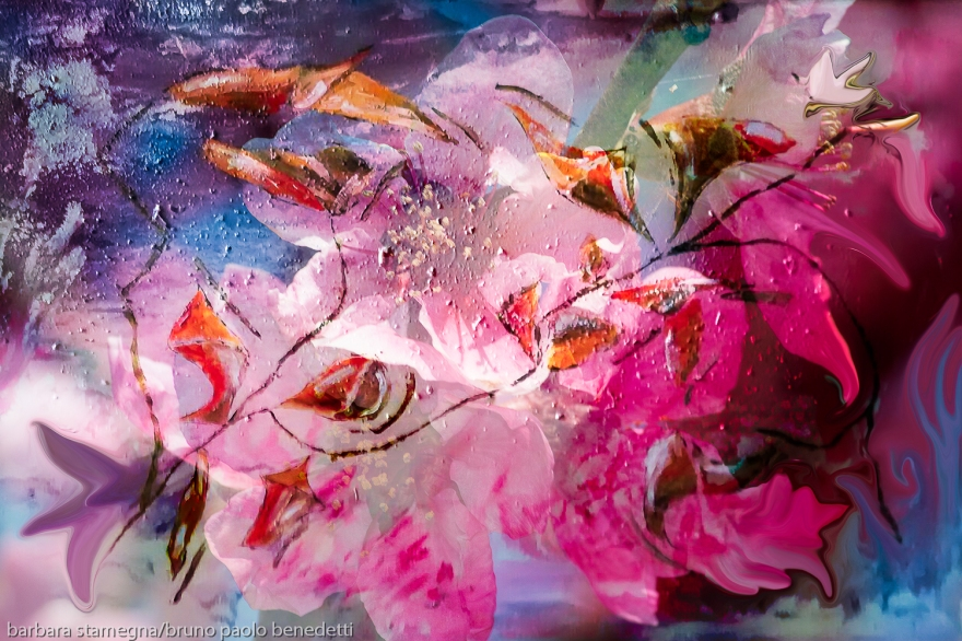 floral creation abstract art multicolored image with flowers and blossoms like shapes with shades