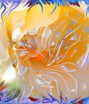 warm colors abstract image with flower and pistils like evolving shapes from inner orange color center